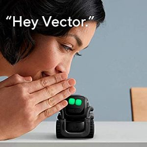 Smart home gadgets - Vector Robot by Anki