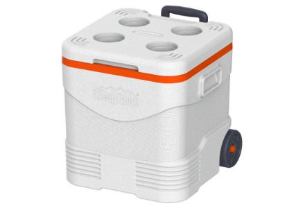 Beach Essentials - cooler box