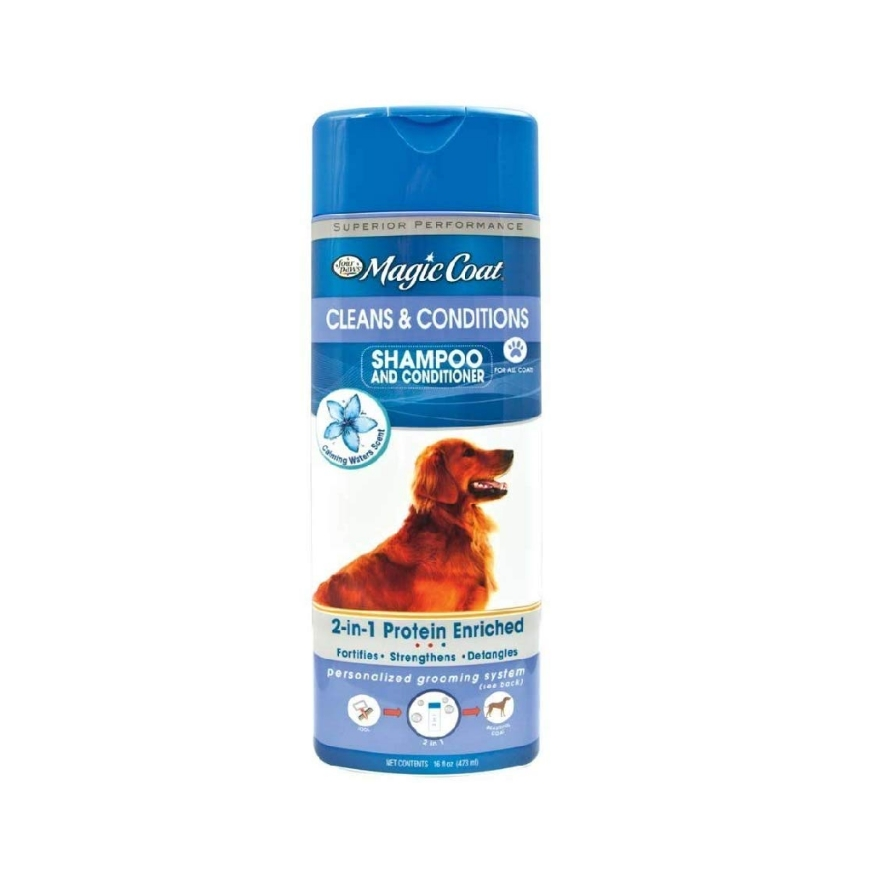 The most importans dog essentials