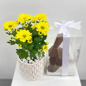 800 flower easter package