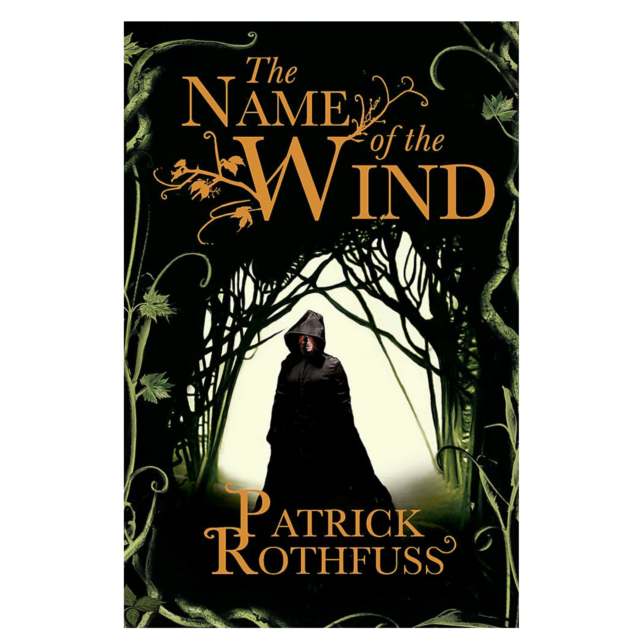 fantasy and adventure books - The Name of the Wind