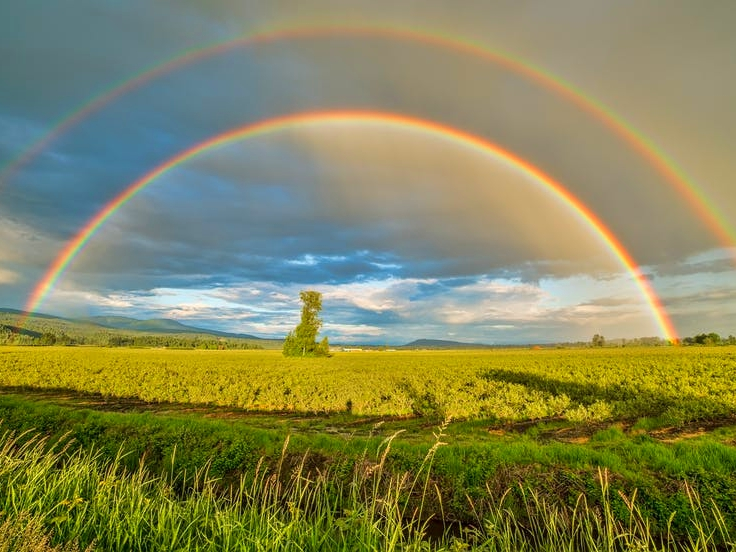 Ways and reasons to celebrate 'Find a Rainbow Day' this year