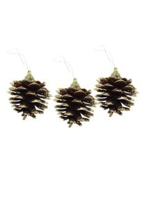 Pine cones VoucherCodesUAE