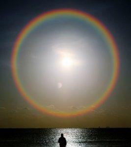 Find a Rainbow VoucherCodesUAE