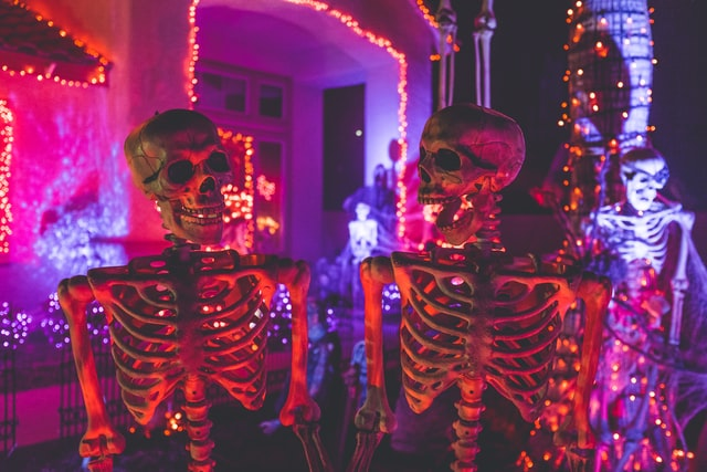halloween party essentials for celebration
